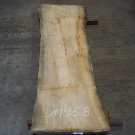 Olive Ash, table top, approx. 2400 x 640 x 65 mm, 11958