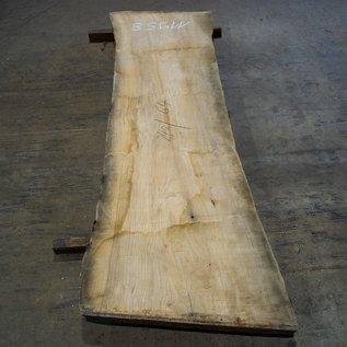 Oliv-Esche Tischplatte, ca. 2400 x 640 x 65 mm, 11958