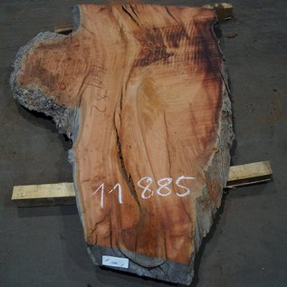Eucalyptus burl, table top, approx. 1400 x 820 x 52 mm, 11885