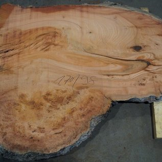 Eucalyptus burl, table top, approx. 1700 x 980 x 52 mm, 11883