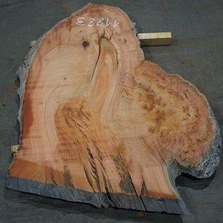 Eukalyptus Maser, Tischplatte, ca. 1700 x 980 x 52 mm, 11883