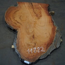 Eucalyptus burl, table top, approx. 1600 x 1050 x 52 mm, 11882