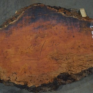 Eucalyptus burl, table top, approx. 1800 x 900 x 52 mm, 11879