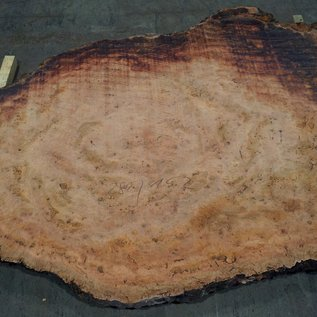 Eucalyptus burl, table top, approx. 2800 x 1520 x 52 mm, 11875