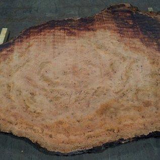 Eukalyptus Maser, Tischplatte, ca. 2800 x 1520 x 52 mm, 11875