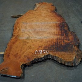 Eucalyptus burl, table top, approx. 3000 x 1600 x 52 mm, 11874