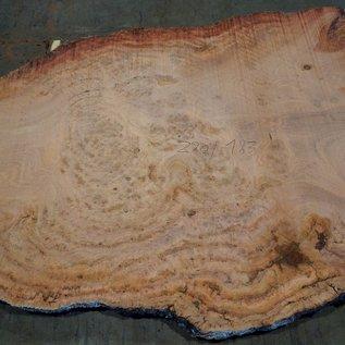 Eukalyptus Maser, Tischplatte, ca. 2900 x 1830 x 52 mm, 11872
