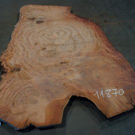 Eucalyptus burl, table top, approx. 2900 x 1800 x 52 mm, 11870