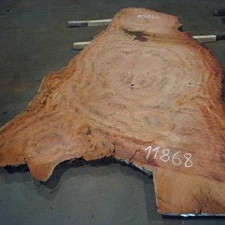 Eukalyptus Maser, Tischplatte, ca. 2900 x 1750 x 52 mm, 11868