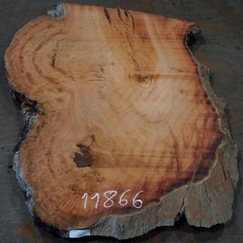 Eucalyptus burl, table top, approx. 1800 x 1110 x 52 mm, 11866