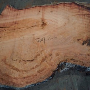 Eucalyptus burl, table top, approx. 1800 x 1110 x 52 mm, 11866
