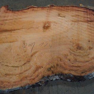 Eukalyptus Maser, Tischplatte, ca. 2000 x 1240 x 52 mm, 11865