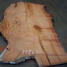 Eucalyptus burl, table top, approx. 2500 x 1490 x 52 mm, 11862