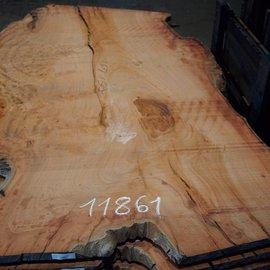 Eukalyptus Maser, Tischplatte, ca. 2600 x 1590 x 52 mm, 11861