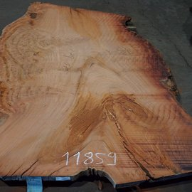 Eukalyptus Maser, Tischplatte, ca. 2700 x 1700 x 52 mm, 11859