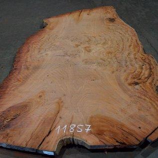 Eukalyptus Maser, Tischplatte, ca. 2800 x 1850 x 52 mm, 11857