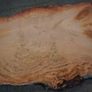 Eukalyptus Maser, Tischplatte, ca. 2750 x 1770 x 52 mm, 11858