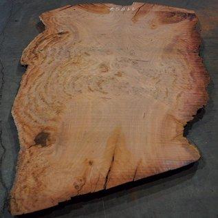 Eucalyptus burl, table top, approx. 2800 x 1850 x 52 mm, 11857