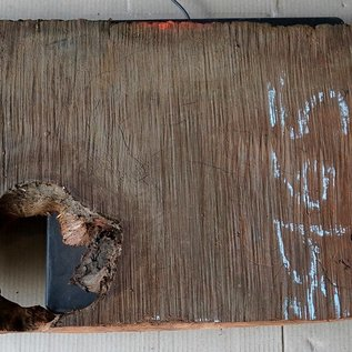 Redwood burl, approx. 1100 x 330 x 52 mm, 60821