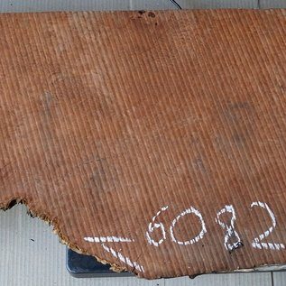 Redwood burl, approx. 900 x 330 x 52 mm, 60825