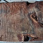 Redwood burl, approx. 900 x 560 x 52 mm, 60837