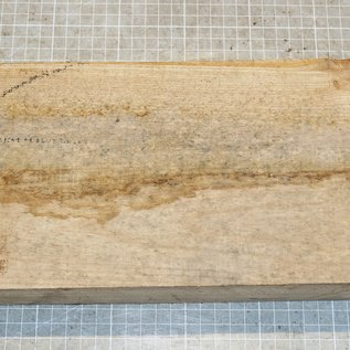 Rüster, Ulme, ca. 300 x 150 x 52 mm, 1,7 kg