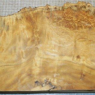Golden Madrone gemasert, ca. 330 x 230 x 58 mm, 4,2 kg