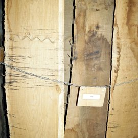 Oak, lumber, kiln dried, 26, 35, 52, 65 mm