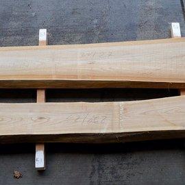 Rüster Schnittholz, künstl. getrocknet