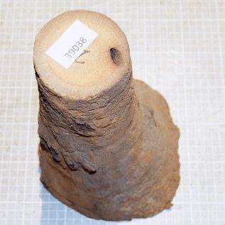 Grasbaum ca. 260 mm hoch, Durchmesser: 160 + 70 mm, 1,8 kg