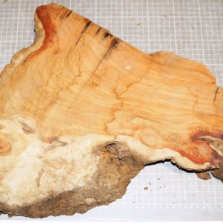 Amboina Maser, ca. 370 x 350 x 35 mm, 2,1 kg