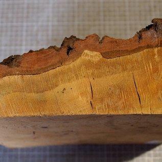 Oak burl, approx. 290 x 260 x 40 mm, 2,9 kg
