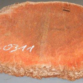 Jarrah burl slab, approx. 840 x 630 x 55 mm