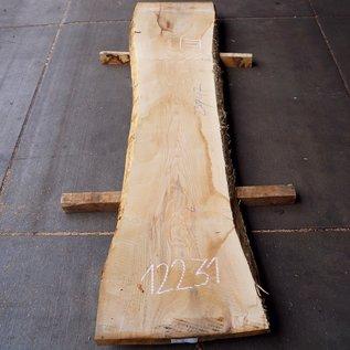 Esche Tischplatte ca. 2300(2500) x 470(550) x 52 mm, 12231