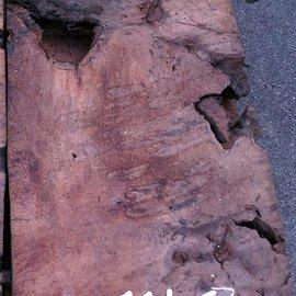 Redwood burl approx. 1100 x 580 x 70 mm, 11463