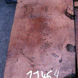 Redwood burl approx. 1000 x 580 x 70 mm, 11464