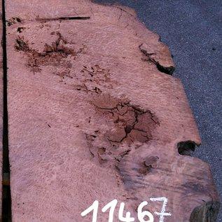 Redwood Maser ca. 1400 x 560 x 70 mm, 11467