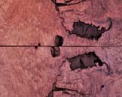 Maserplatten und Baumscheiben