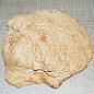 Goldfield Maser ca. 310 x 250 x 85 mm, 6,3 kg