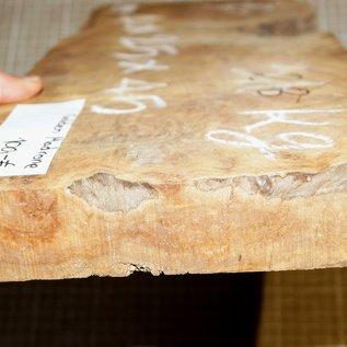 Golden Madrone Maser ca. 440 x 200 x 40 mm, 2,7 kg