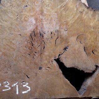Laurel Maser, Tischplatte, ca. 1170 x 780 x 65 mm, 12313