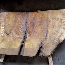 Laurel Burl, table top, approx. 1320 x 800 x 65 mm, 12328