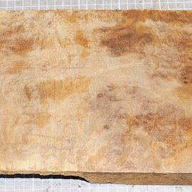 Golden Madrone burl, approx. 530 x 185 x 50 mm, 3,5 kg