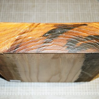 Rüster, ca. 300 x 300 x 70 mm