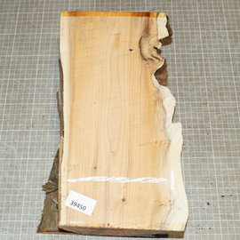 Yew approx. 350 x 150 x 85 mm, 2,6 kg