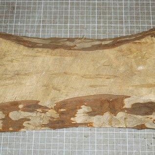 Birke schlicht, ca. 320 x 150 x 40 mm, 1,4 kg
