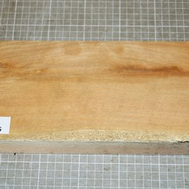 Honey Locust, approx. 300 x 130 x 54 mm, 1,4 kg