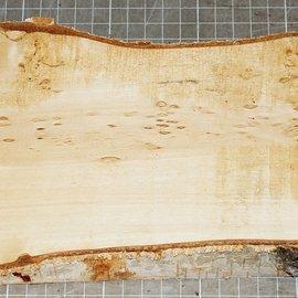 Birke Maser, ca. 345 x 115 x 35 mm, 1,1 kg