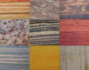 Holzarten von A - Z