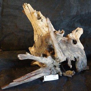 Mopane Wurzel - Skulptur, ca. 50 x 60 x 35 cm, 91512